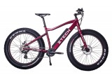 Bicicleta Electrica ZT87 FAT-bike LI-ION RED