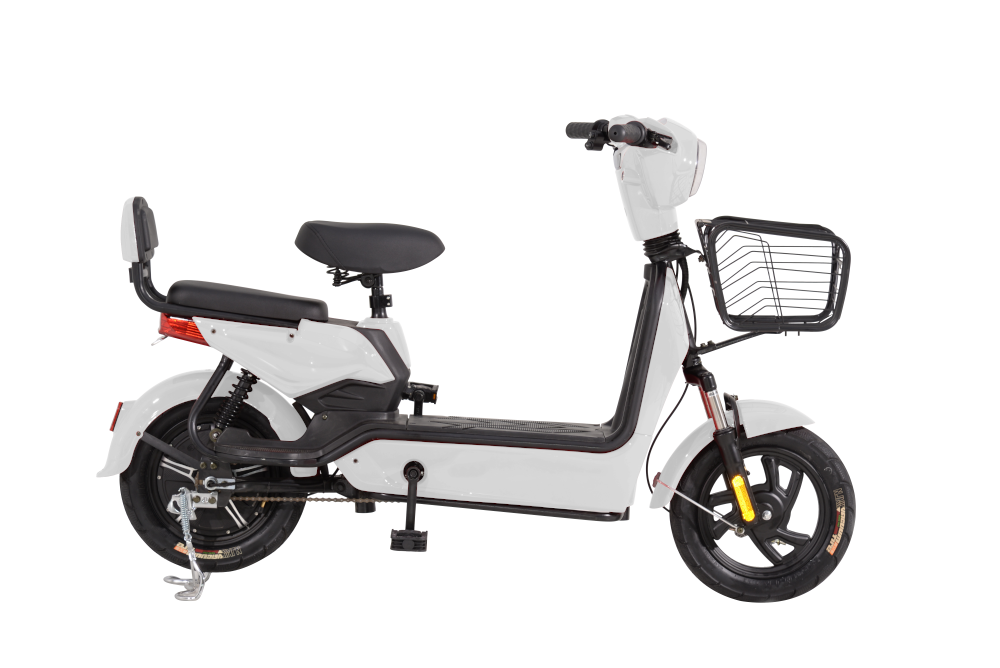 Scuter Electric RKS ECO BIKE ALB